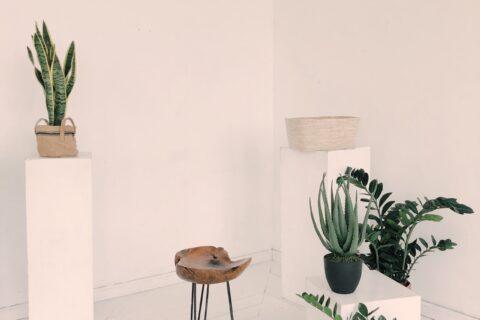 Bæredygtig indretning af hus og have? Køb danske designs!