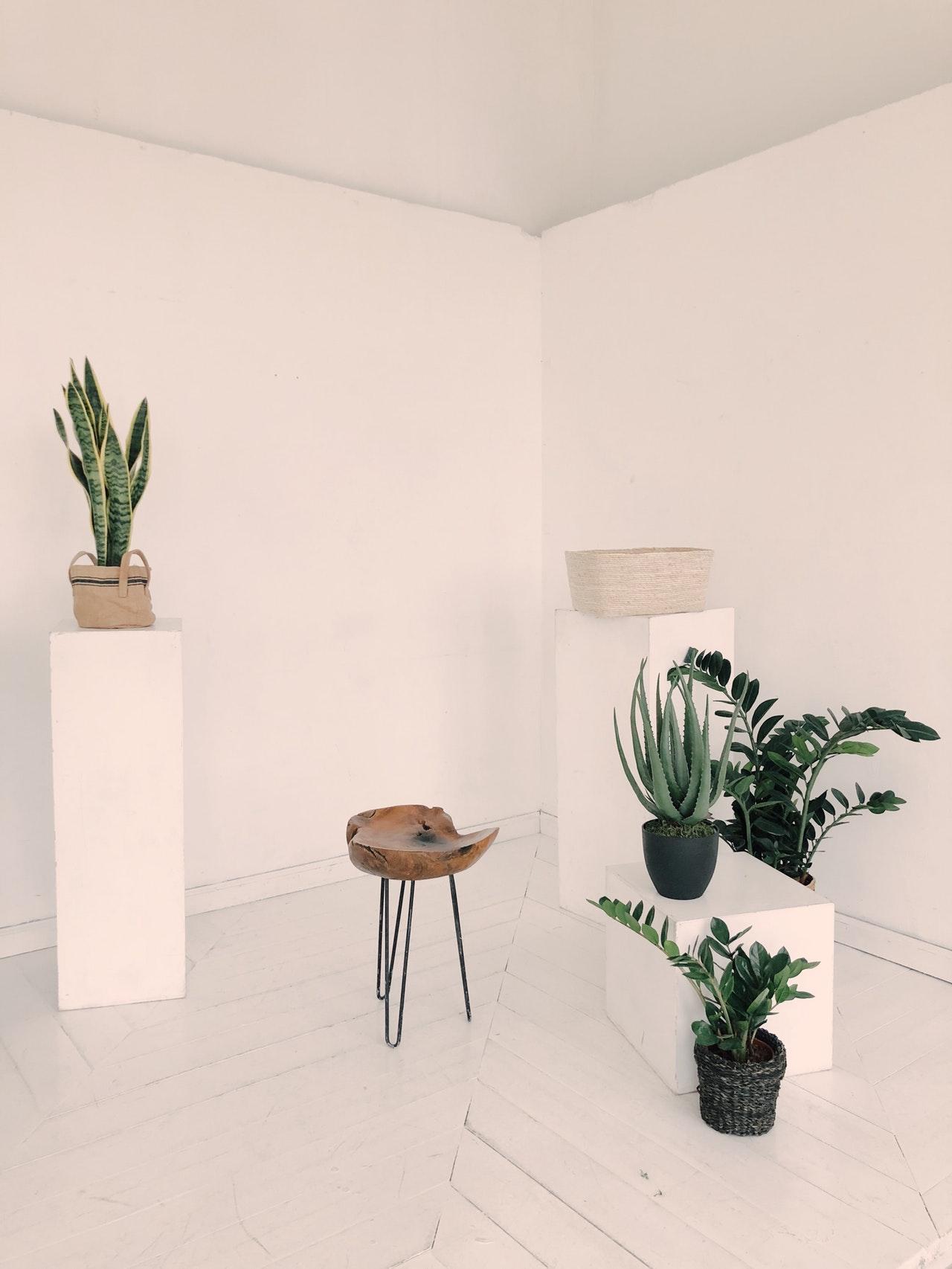 Guide: Dansk design til bæredygtig indretning